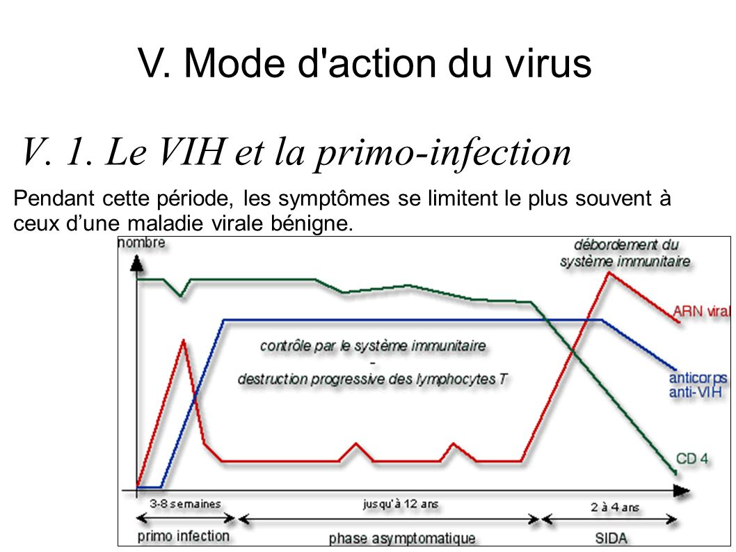V. 1. Le VIH et la primo-infection