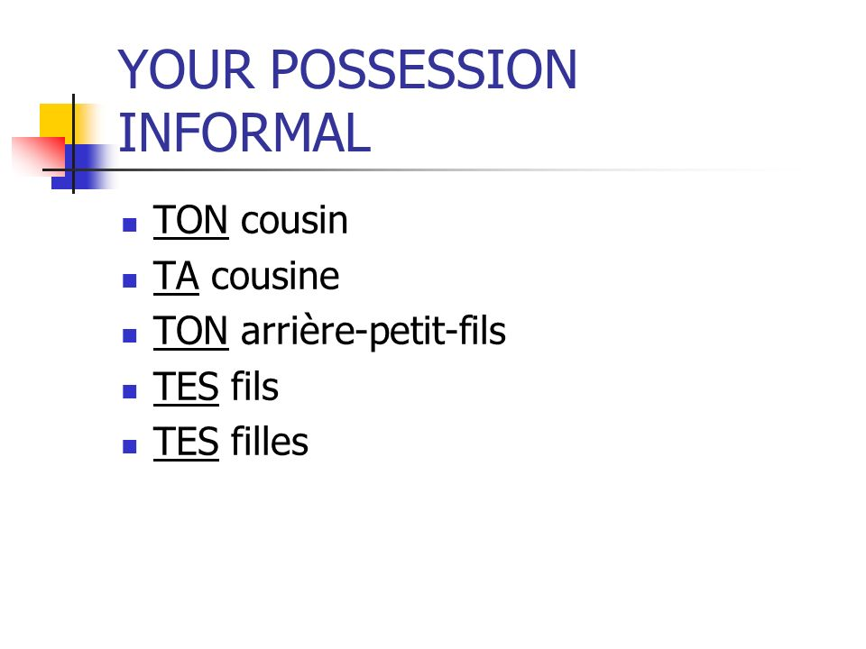 YOUR POSSESSION INFORMAL