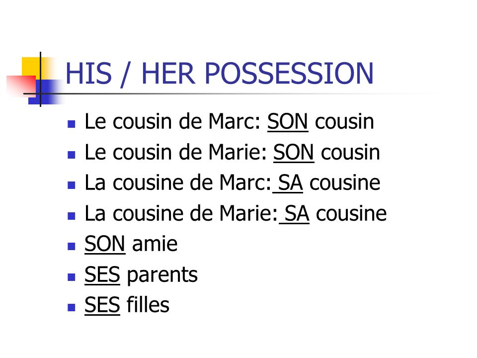 HIS / HER POSSESSION Le cousin de Marc: SON cousin