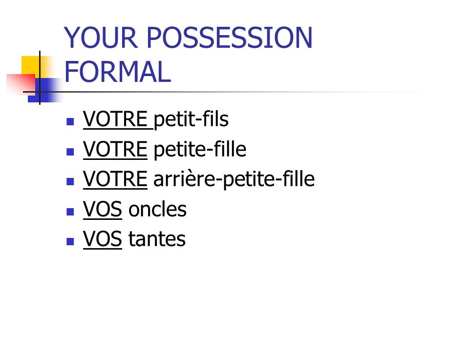 YOUR POSSESSION FORMAL