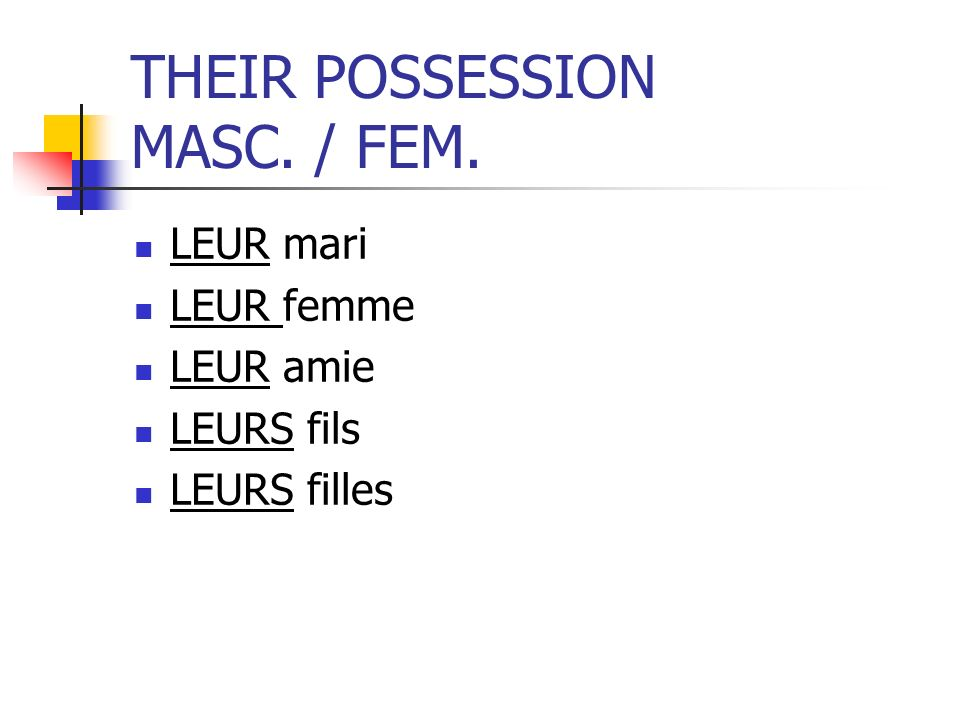 THEIR POSSESSION MASC. / FEM.