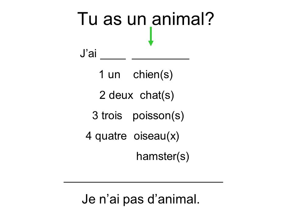 Tu as un animal J'ai ____ _________ Je n'ai pas d'animal.