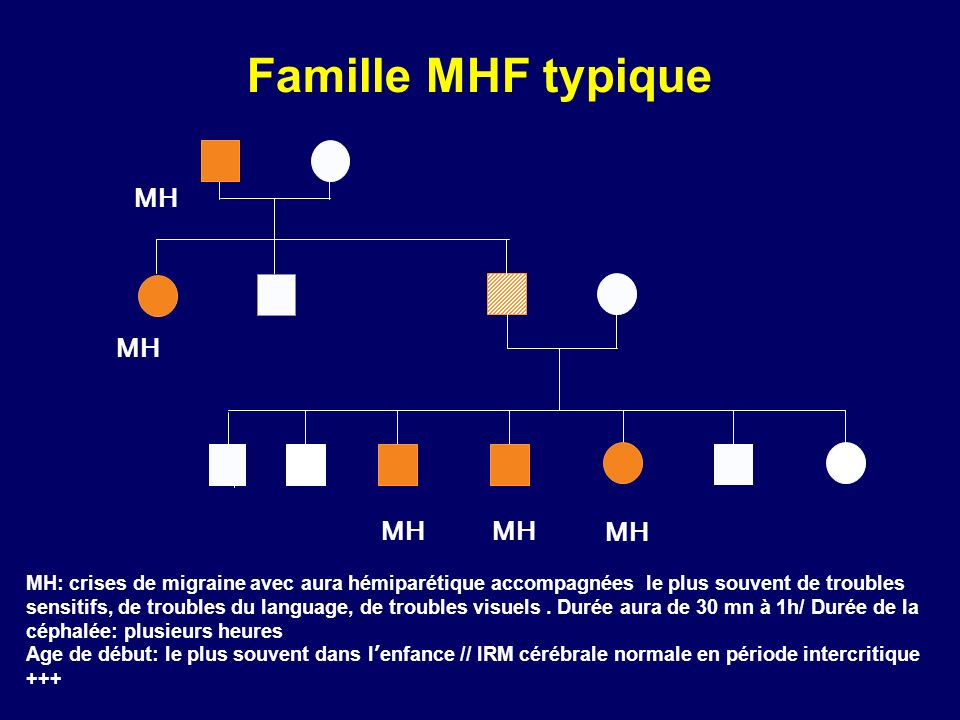 Famille MHF typique MH.