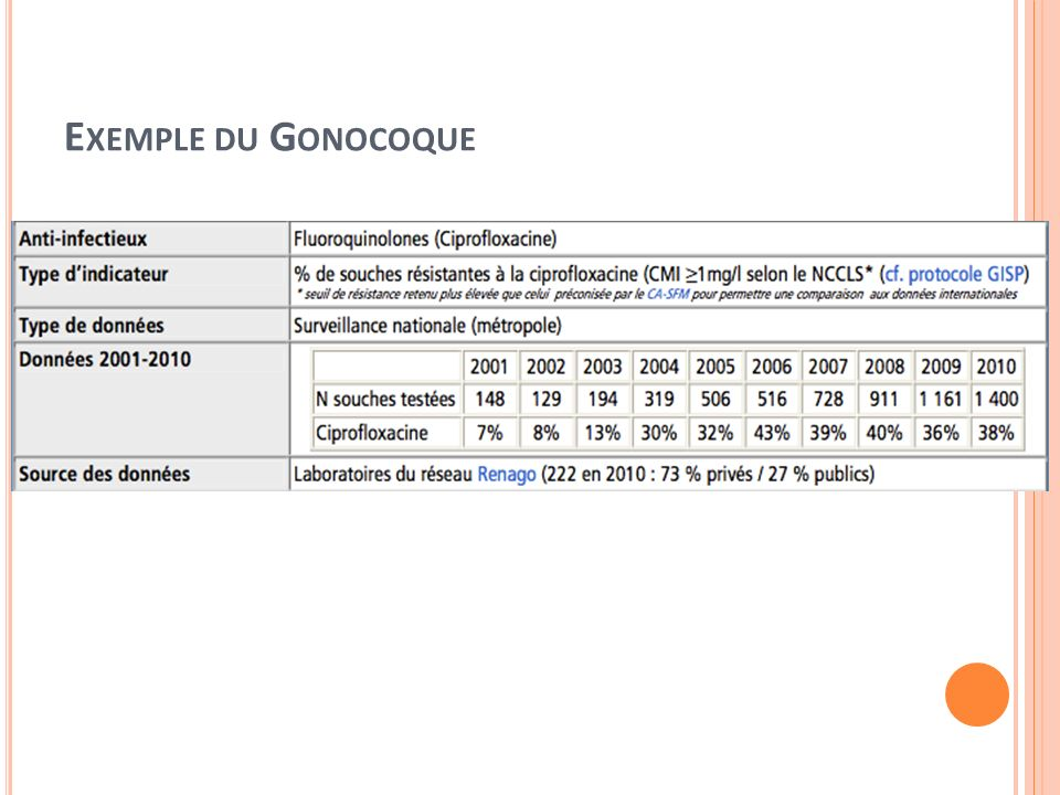 Exemple du Gonocoque