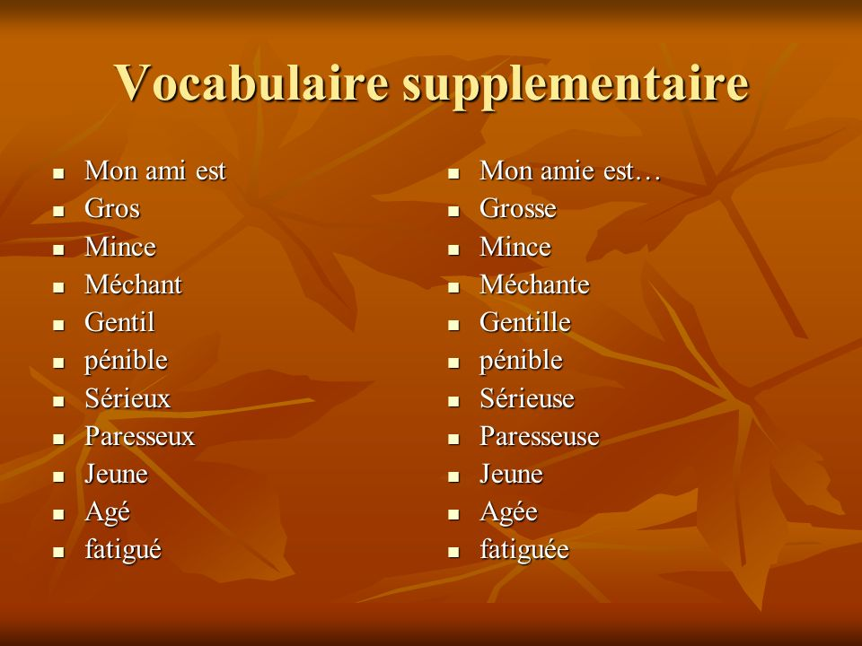Vocabulaire supplementaire