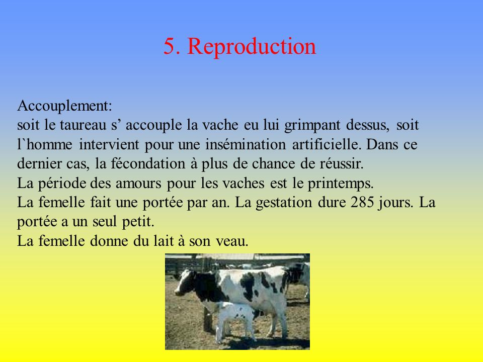 5. Reproduction