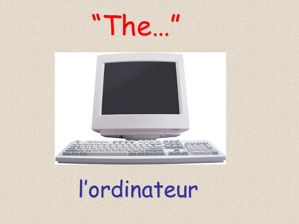 The… l'ordinateur