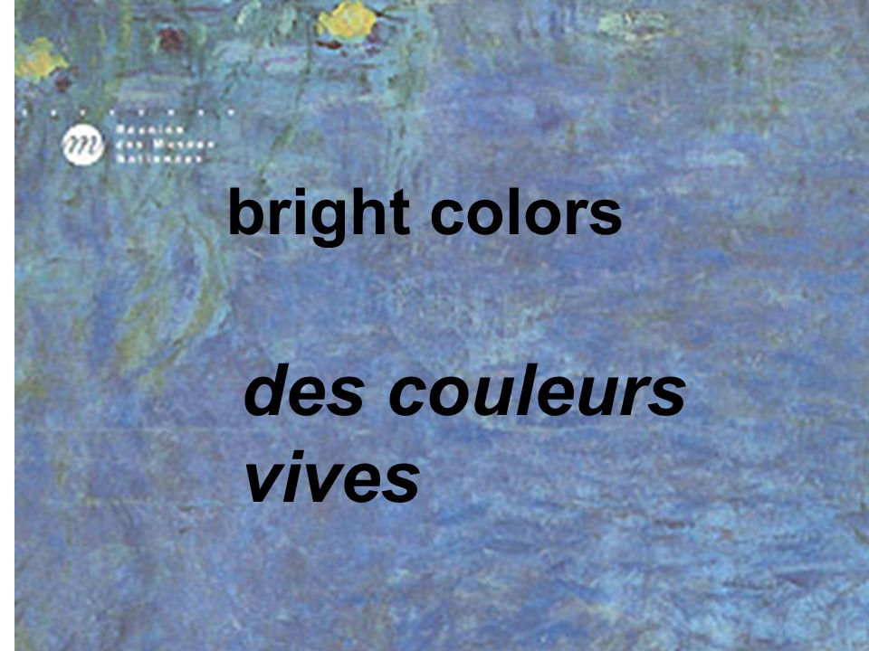 bright colors des couleurs vives