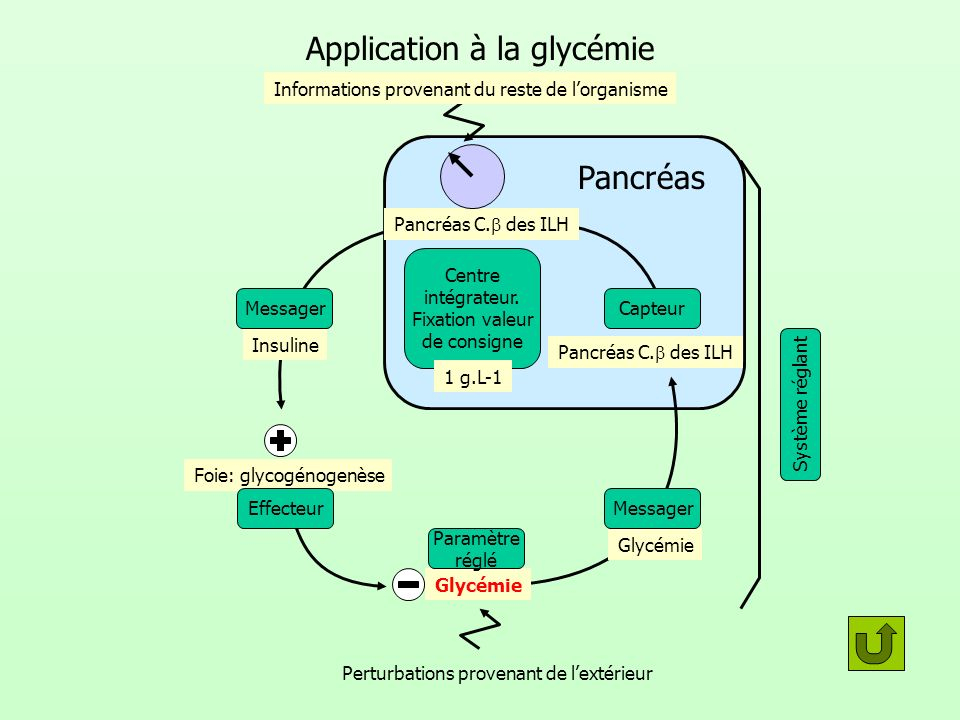 Application à la glycémie