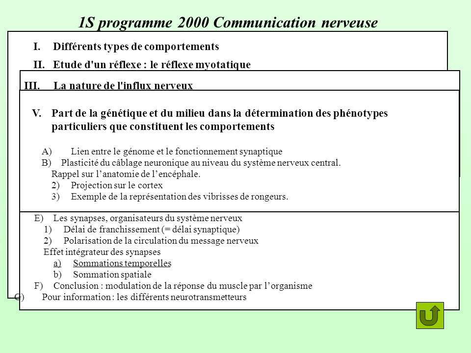 1S programme 2000 Communication nerveuse