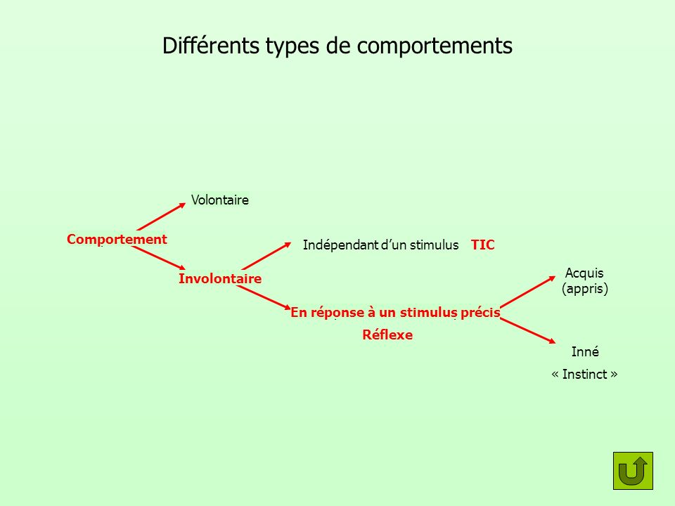 Différents types de comportements