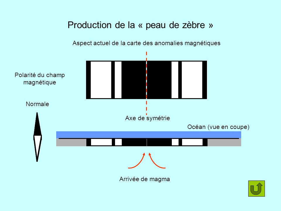 Production de la « peau de zèbre »