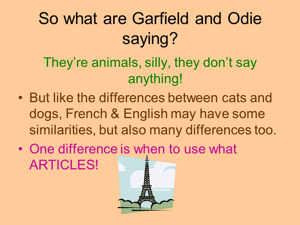 So what are Garfield and Odie saying