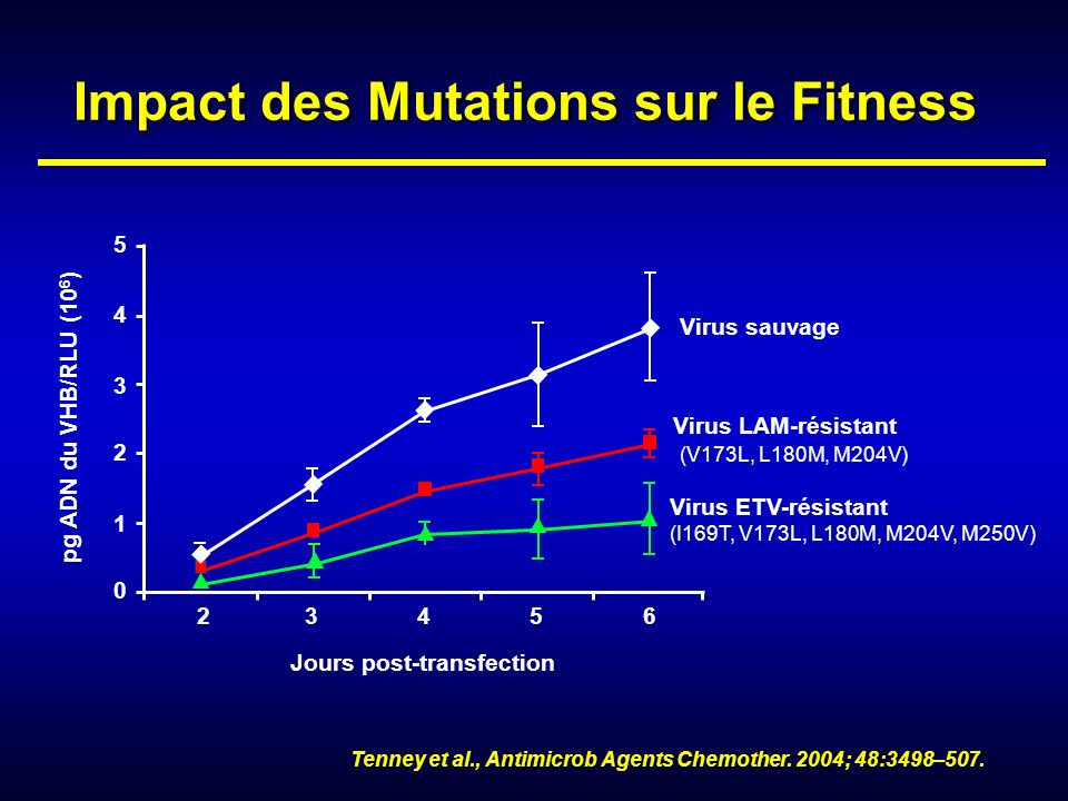 Impact des Mutations sur le Fitness Jours post-transfection