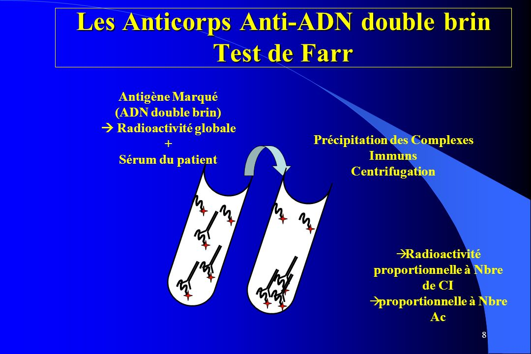 Les Anticorps Anti-ADN double brin Test de Farr