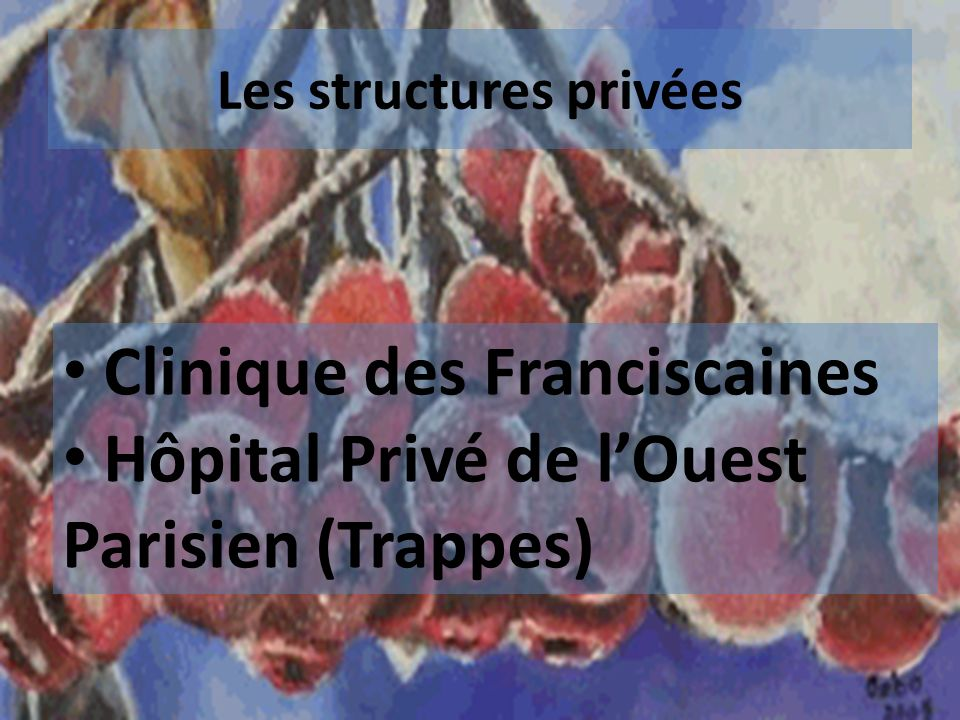 Les structures privées