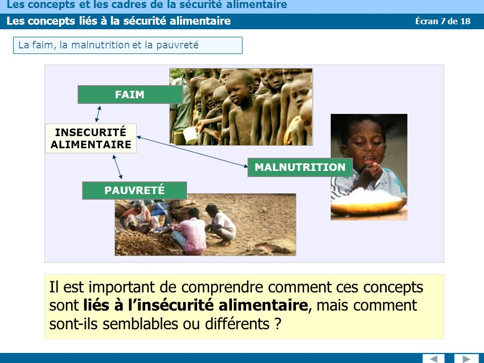 INSECURITÉ ALIMENTAIRE