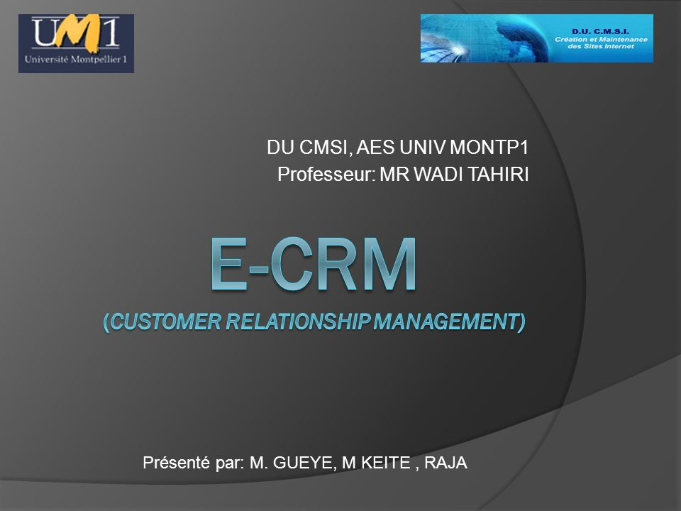 E-CRM (customer relationship management)