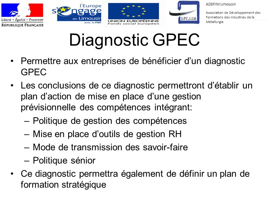 ADEFIM Limousin Association de Développement des Formations des Industries de la Métallurgie. Diagnostic GPEC.