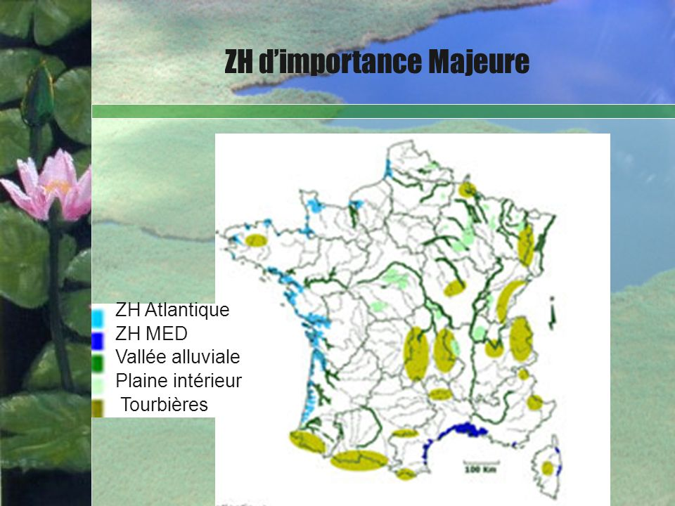ZH d'importance Majeure