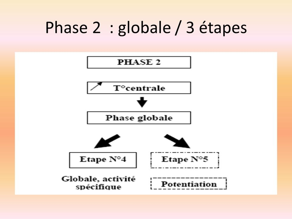 Phase 2 : globale / 3 étapes