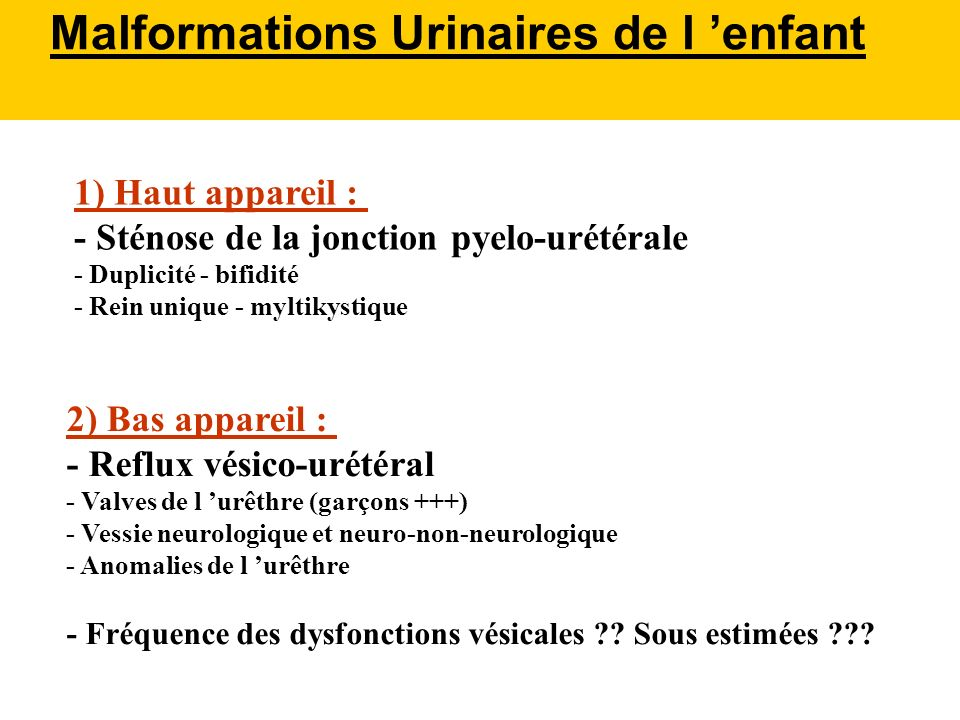 Malformations Urinaires de l 'enfant