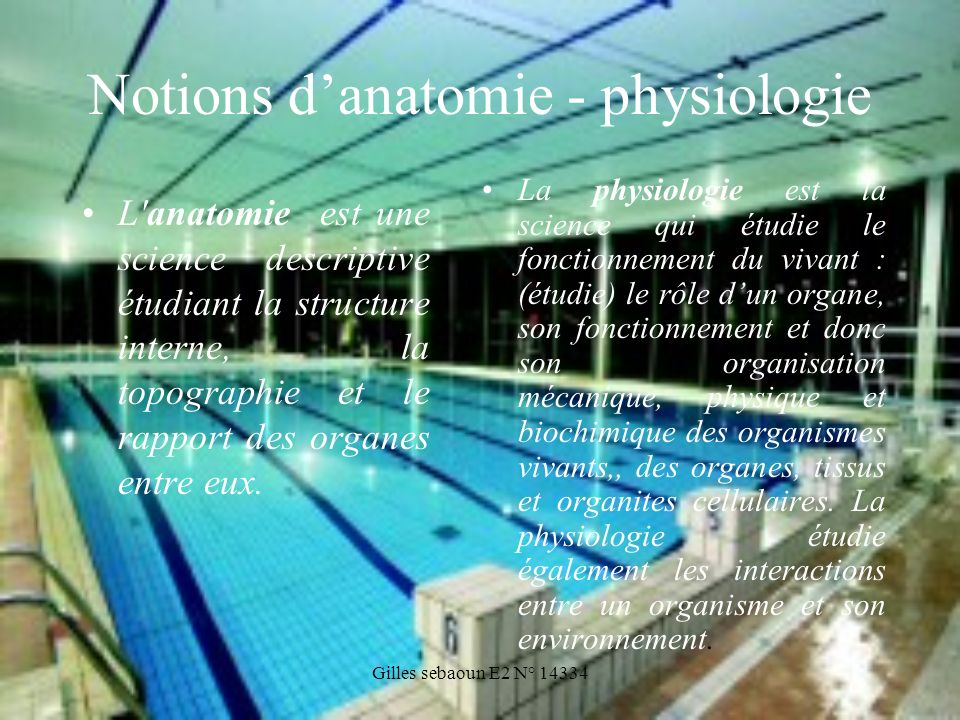 Notions d'anatomie - physiologie