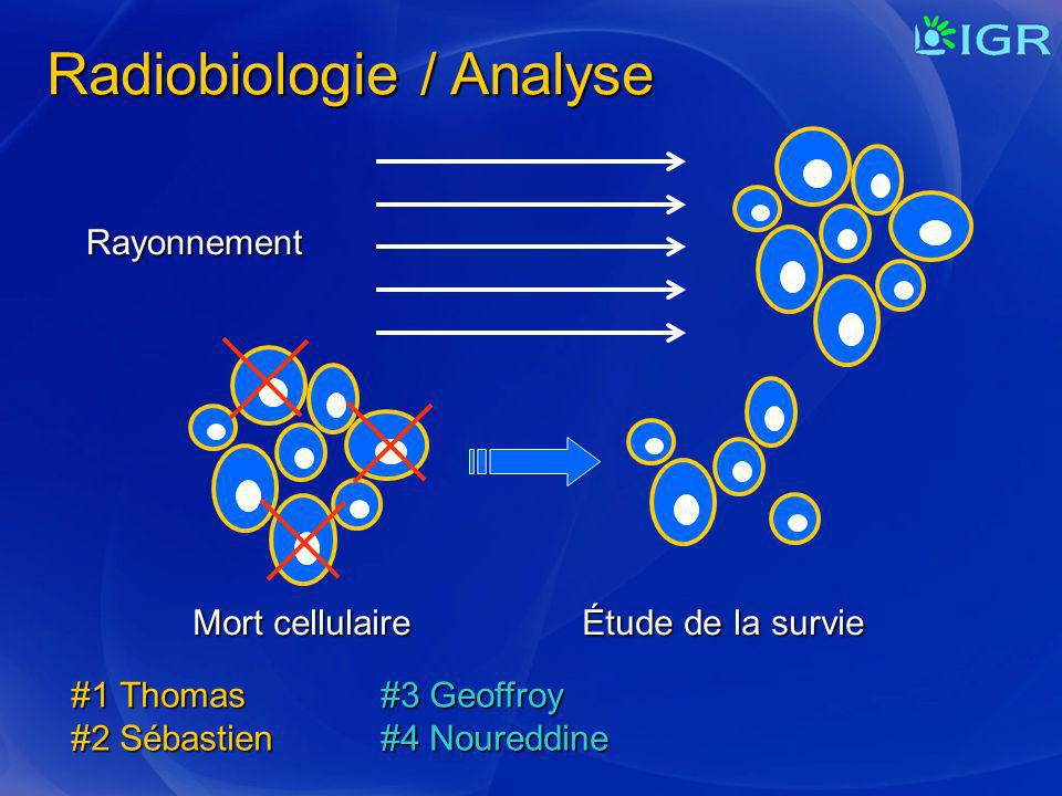 Radiobiologie / Analyse