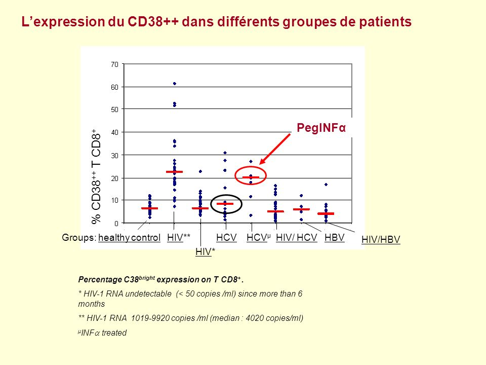 L'expression du CD38++ dans différents groupes de patients