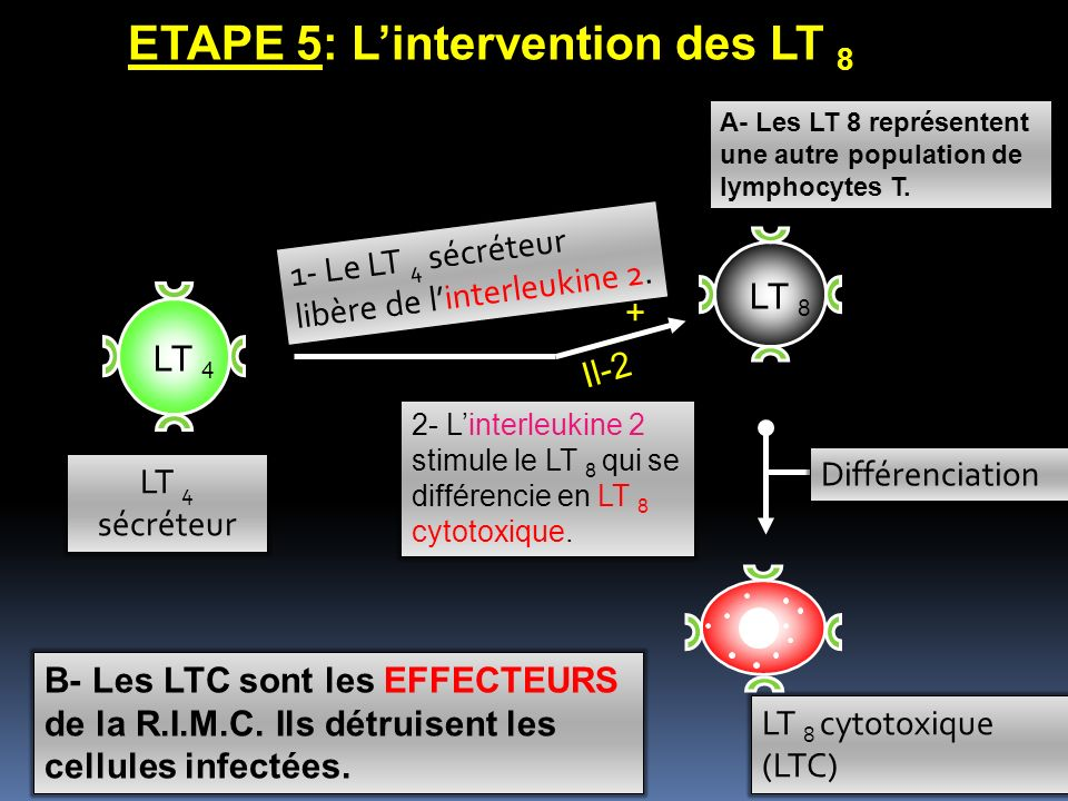 ETAPE 5: L'intervention des LT 8