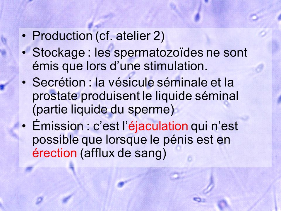 Production (cf. atelier 2)