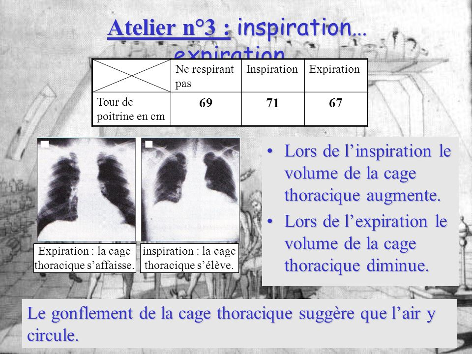 Atelier n°3 : inspiration… expiration…