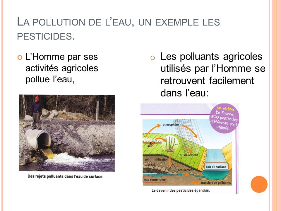 La pollution de l'eau, un exemple les pesticides.