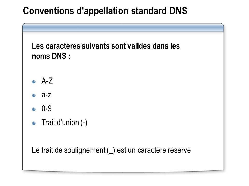 Conventions d appellation standard DNS