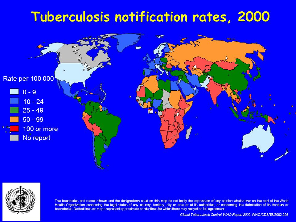 Tuberculosis notification rates, 2000