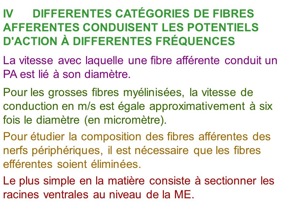 IV DIFFERENTES CATÉGORIES DE FIBRES AFFERENTES CONDUISENT LES POTENTIELS D ACTION À DIFFERENTES FRÉQUENCES