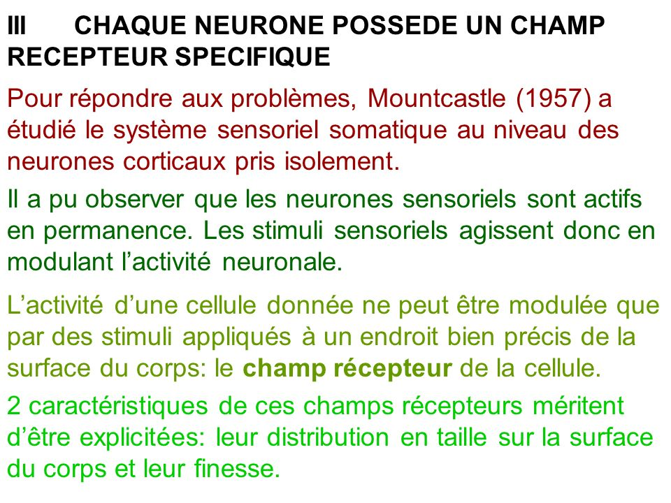 III CHAQUE NEURONE POSSEDE UN CHAMP RECEPTEUR SPECIFIQUE