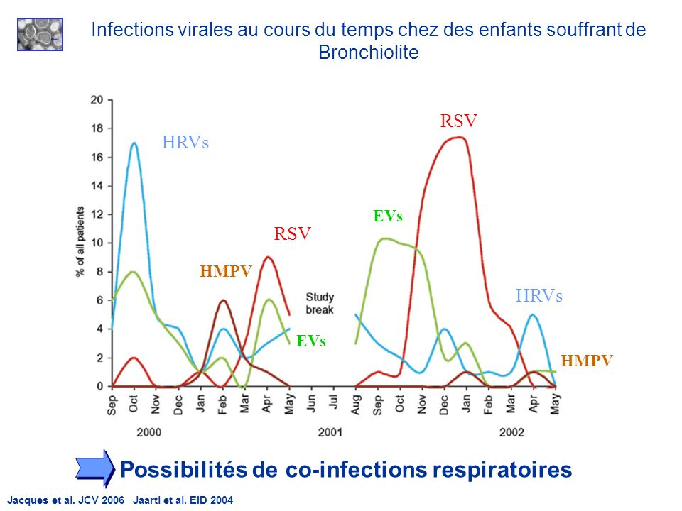 Possibilités de co-infections respiratoires