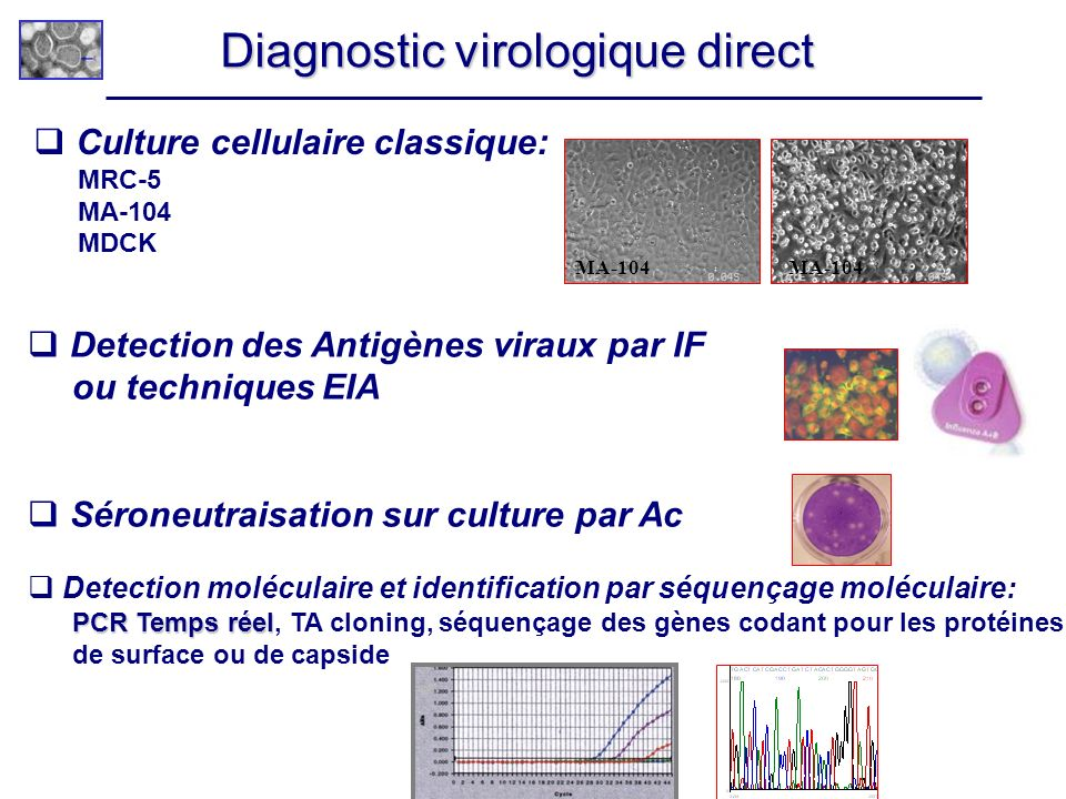 Diagnostic virologique direct