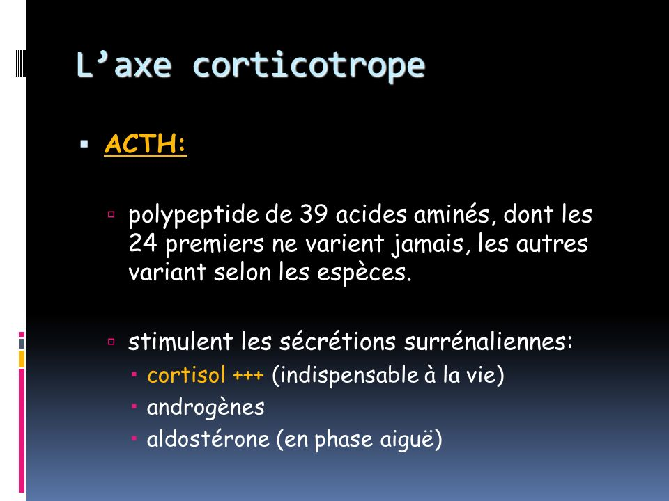 L'axe corticotrope ACTH: