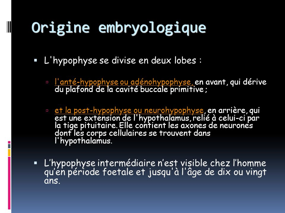 Origine embryologique