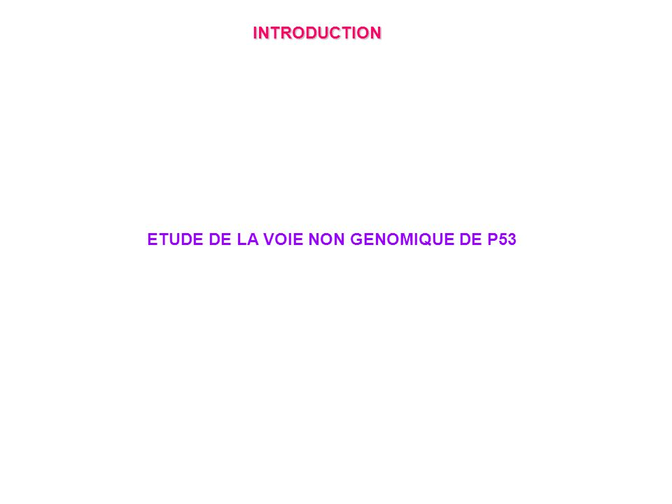 INTRODUCTION ETUDE DE LA VOIE NON GENOMIQUE DE P53