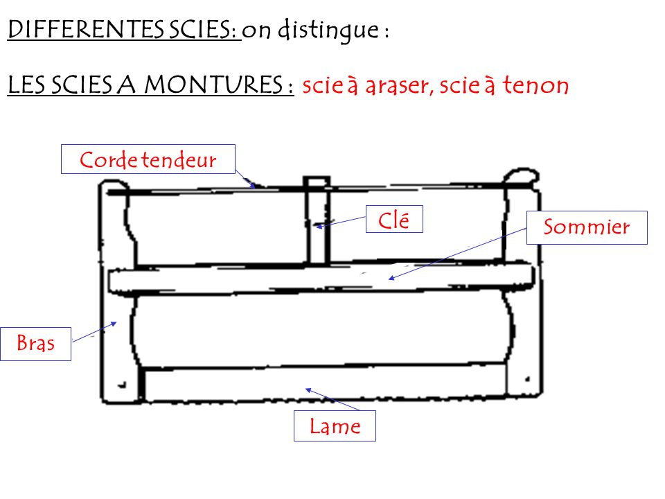 DIFFERENTES SCIES: on distingue :