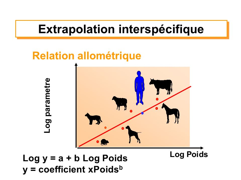Extrapolation interspécifique