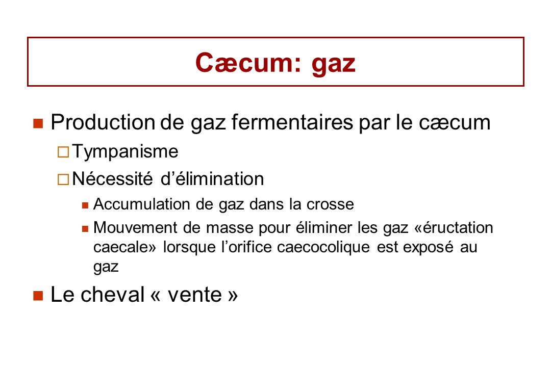 eliminer gaz intestinaux