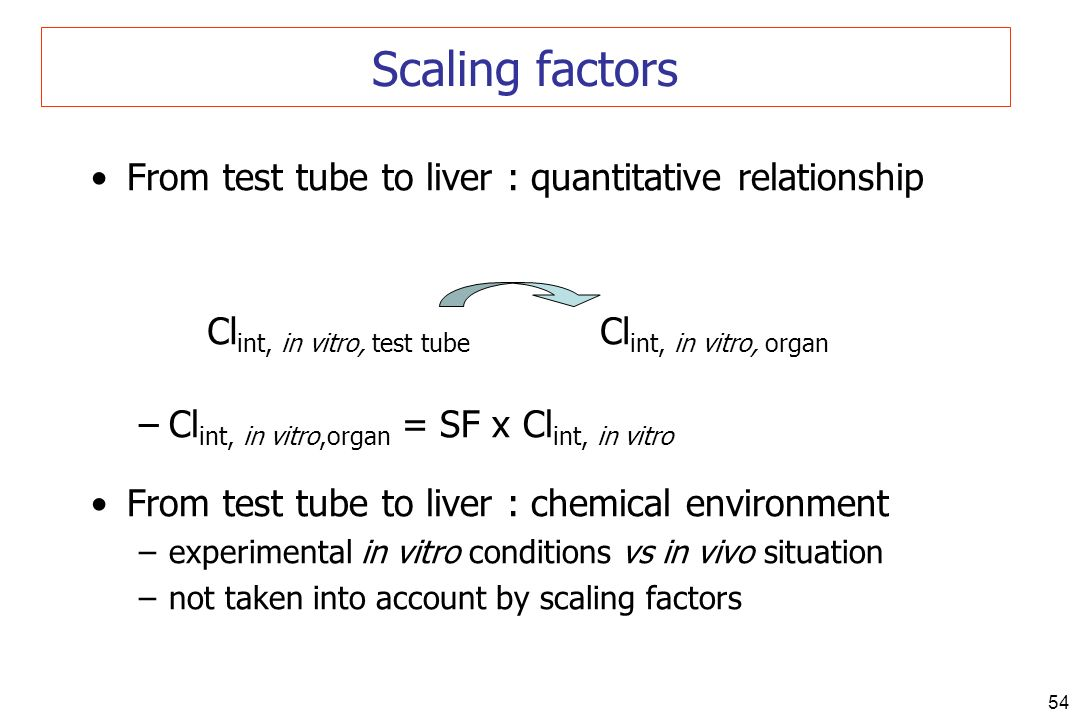 Scaling factors From test tube to liver : quantitative relationship