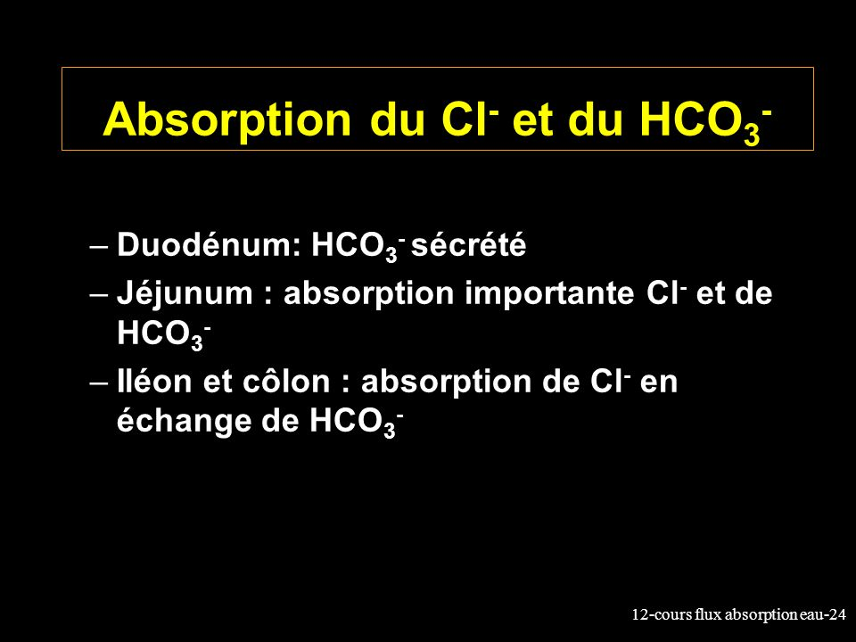 Absorption du Cl- et du HCO3-