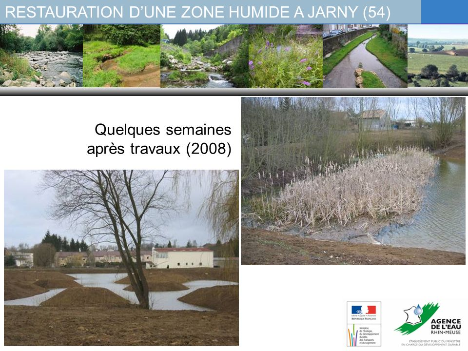 RESTAURATION D'UNE ZONE HUMIDE A JARNY (54)