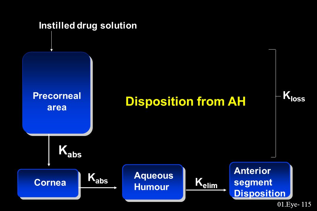 Disposition from AH Kabs Kloss Kabs Kelim Instilled drug solution