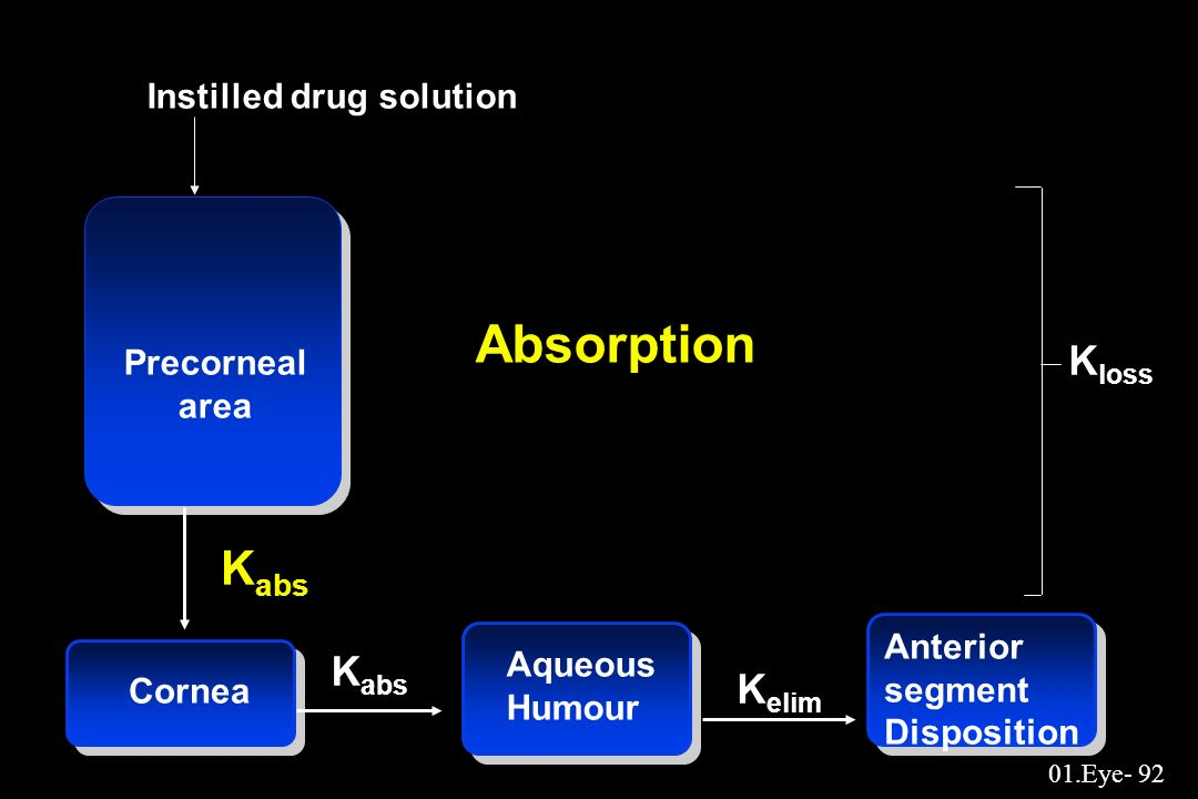 Absorption Kabs Kloss Kabs Kelim Instilled drug solution